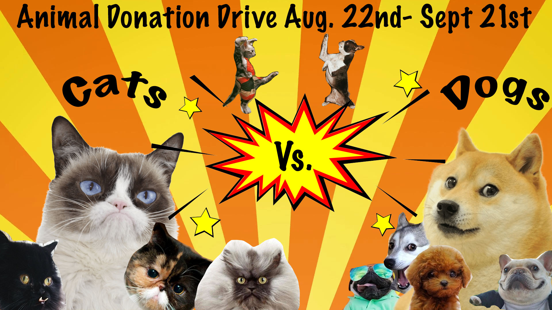 KnowBe4 Animal Donation Drive
